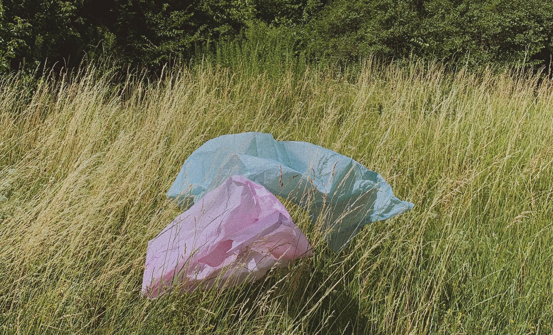 Plastic bags in nature