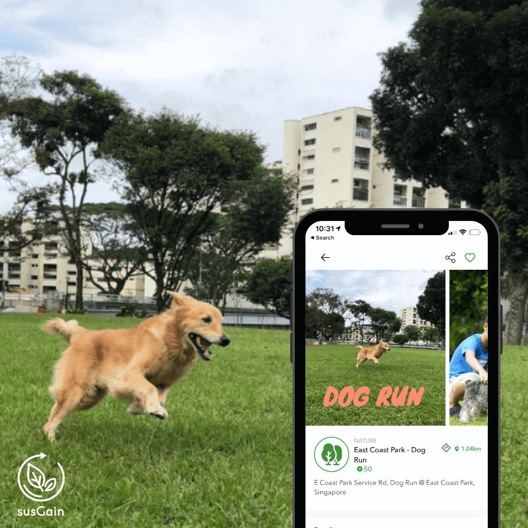 Dog parks on susGain